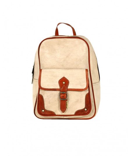 Leather backpack in two colors